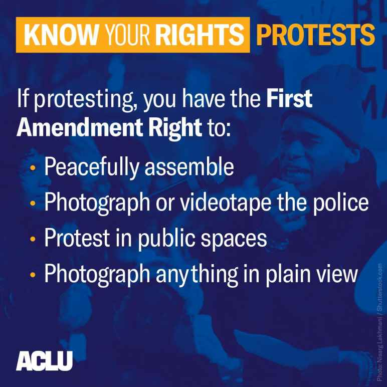 know your rights if protesting graphic
