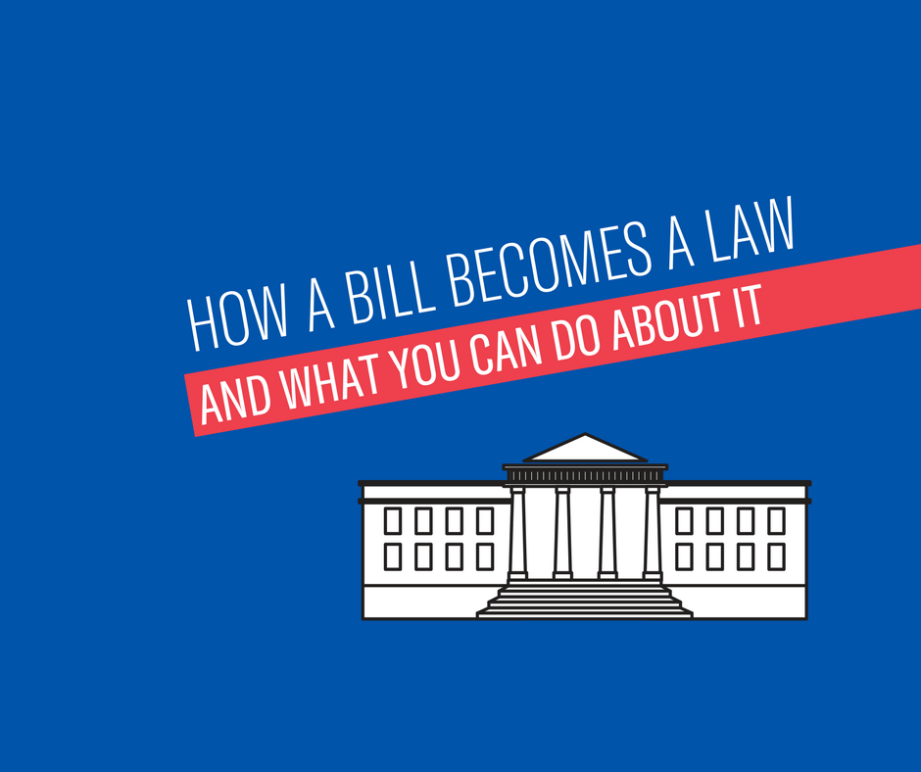 how a bill becomes a law and what you can do about it